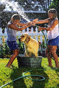 Deschooling - kids bathing the dog