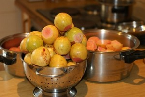 South African recipes - guavas for guava pie